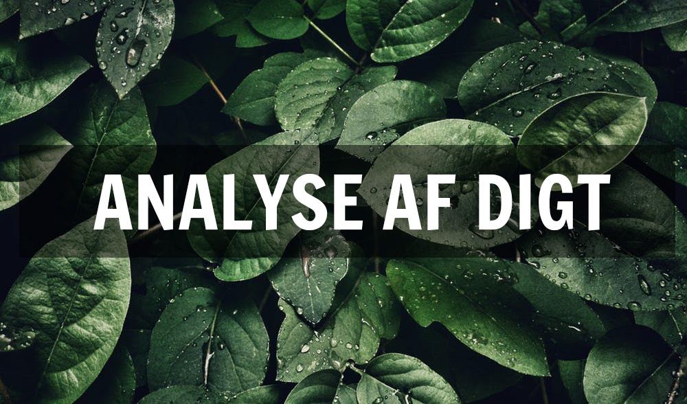 digtanalyse